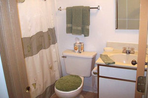 Bathroom with sink, bathtub, green accent decor