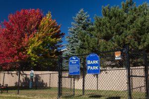 Fenced Bark Park with trees