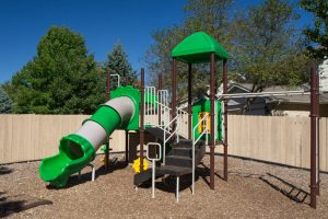 Playground with slide, monkey bars